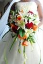Элита, свадебный салон